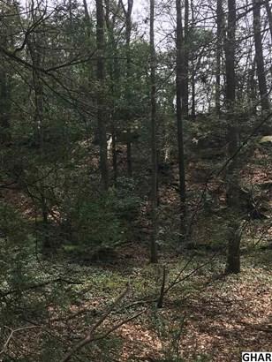 982 Swopes Valley, Pine Grove, PA - USA (photo 3)