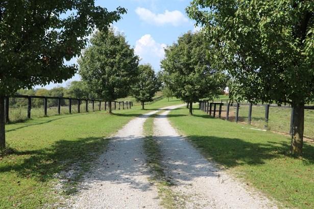 821 Kentucky Highway 1298 , Cynthiana, KY - USA (photo 2)