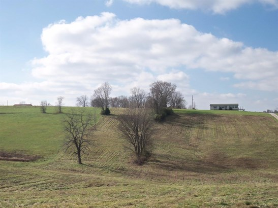 3667 Kentucky Highway 1054 , Berry, KY - USA (photo 1)