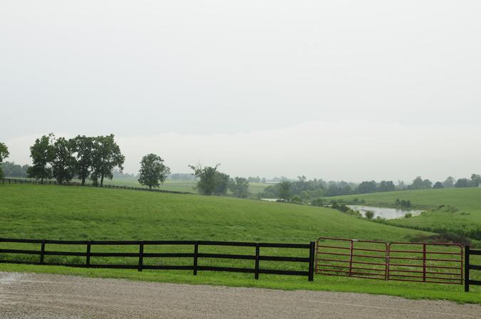 3945 Leestown Road , Midway, KY - USA (photo 4)
