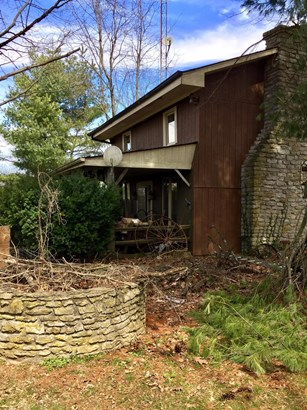 1192 Russell Cave Road , Paris, KY - USA (photo 5)