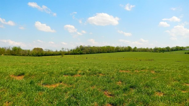 1627 Kidds Mill Road , Versailles, KY - USA (photo 5)