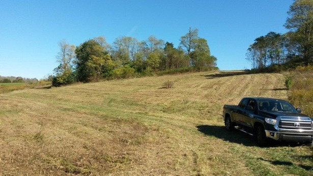 2 Locust Fork Road , Stamping Ground, KY - USA (photo 4)