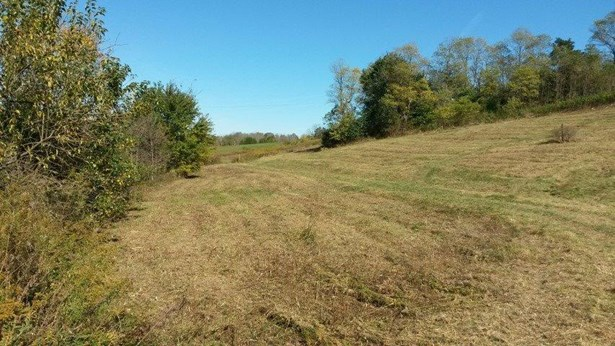 2 Locust Fork Road , Stamping Ground, KY - USA (photo 5)