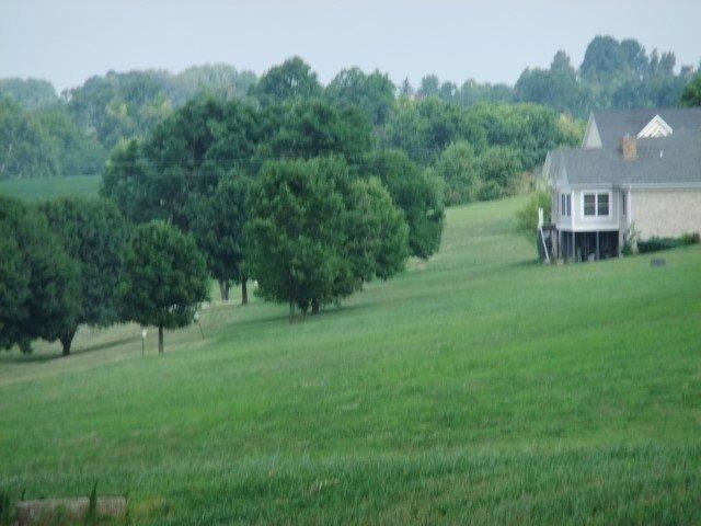 408 Tranquil Lane , Cynthiana, KY - USA (photo 5)