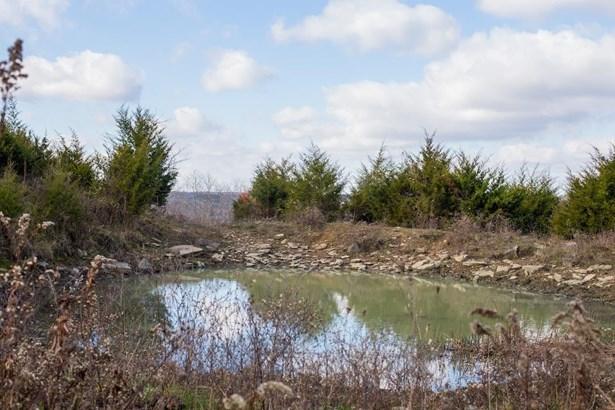 4417 Dry Branch Road , Lexington, KY - USA (photo 5)