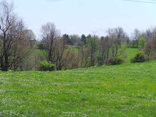 2156 L & E Junction Road , Winchester, KY - USA (photo 3)