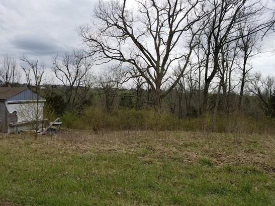 1147 Cr-1326 Tanyard Branch Road , Lancaster, KY - USA (photo 4)