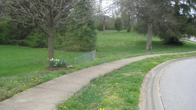 1296 Cape Cod Circle, Lexington, KY - USA (photo 5)