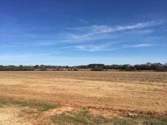 Residential Land - Headland, AL