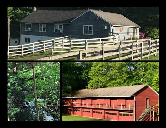 109 N Mabbettsville, Millbrook, NY - USA (photo 1)
