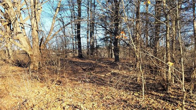 20 Pine Road, Bedford Hills, NY - USA (photo 4)