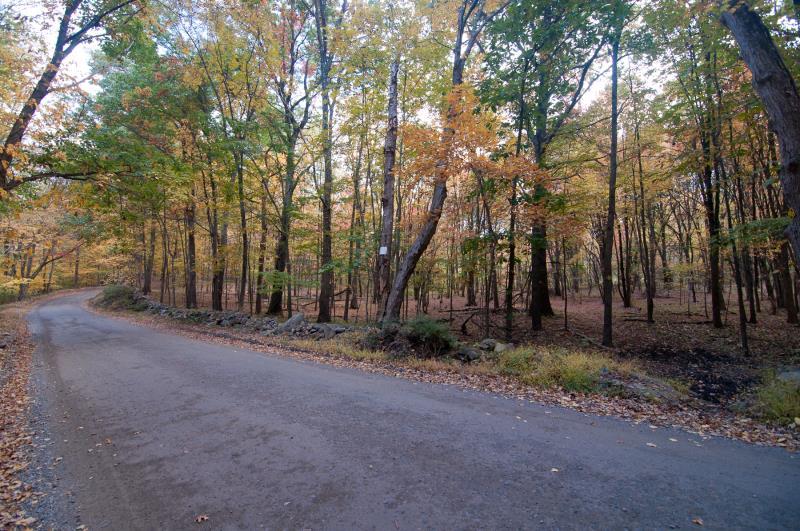185 Finch Road, North Salem, NY - USA (photo 2)
