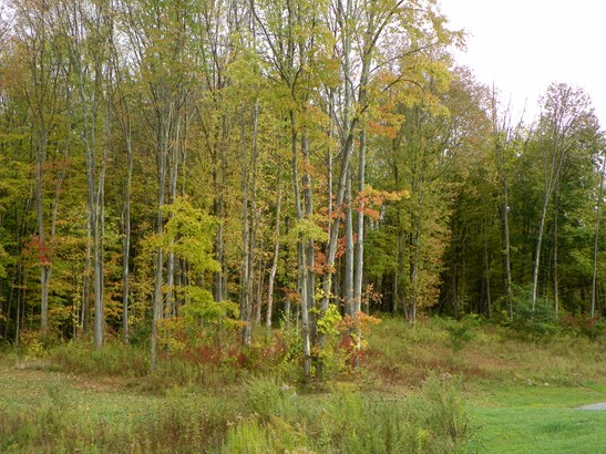 Lot 7 Pond View, Hyde Park, NY - USA (photo 4)