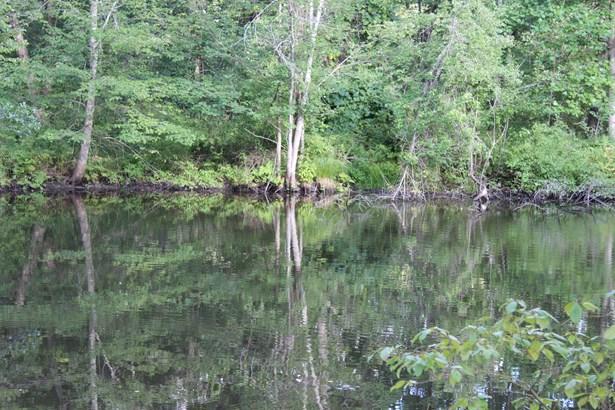 Pond Gut, La Grange, NY - USA (photo 3)