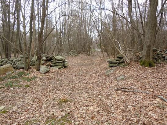 265 S White Rock Rd, Pawling, NY - USA (photo 4)