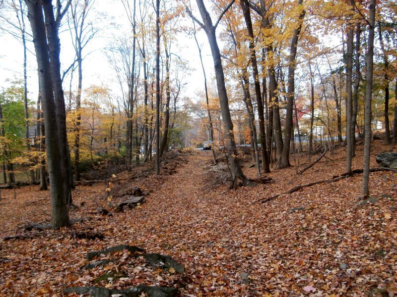 Birch Hill Road, Putnam Valley, NY - USA (photo 3)