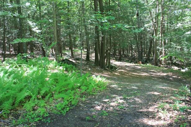 Lower Trinity Pass Road, Pound Ridge, NY - USA (photo 4)