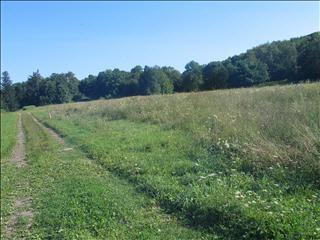 2200 Route 44, Pleasant Valley, NY - USA (photo 2)