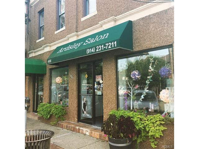 466 Ashford Avenue, Ardsley, NY - USA (photo 2)