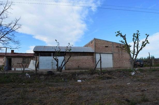 Finca En Cuadro Benegas, Cuadro Benegas - ARG (photo 4)
