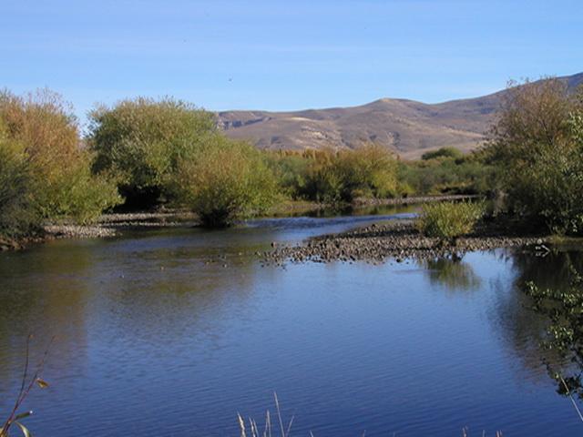 La Guarida - Estancias Leufú, Junin De Los Andes - ARG (photo 3)