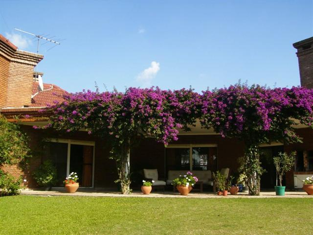 Casa En San Diego 0, Moreno - ARG (photo 2)