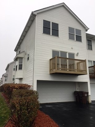 Townhouse-trilevel - BEECHER, IL (photo 2)