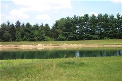 Vacant Land/Acreage - Wheatfield, IN (photo 4)