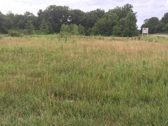 Vacant Land/Acreage - Wheatfield, IN (photo 1)