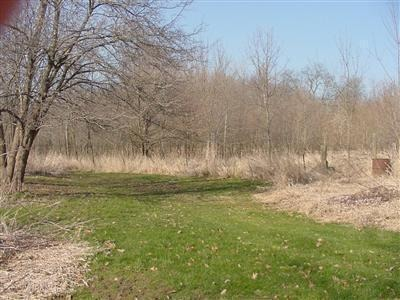 Land - Brook, IN (photo 3)