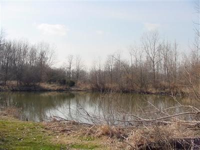 Vacant Land/Acreage - Brook, IN (photo 2)