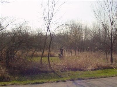 Vacant Land/Acreage - Brook, IN (photo 4)