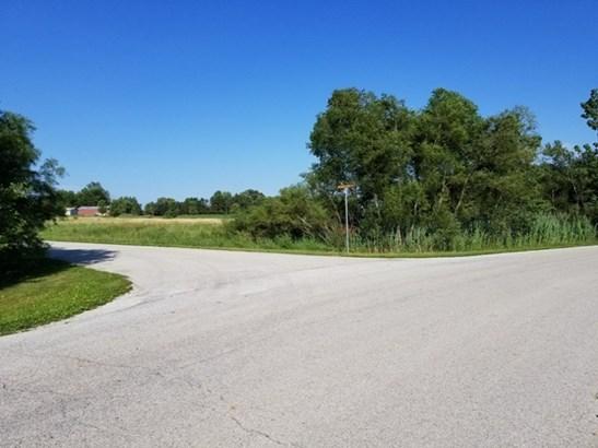 Land - GRANT PARK, IL (photo 4)