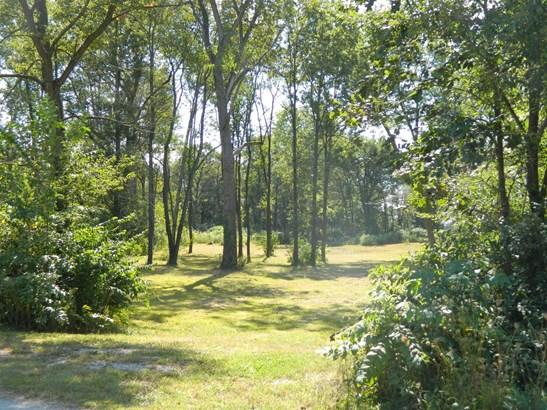 Vacant Land/Acreage - Fair Oaks, IN (photo 3)