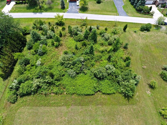 Vacant Land/Acreage - Merrillville, IN (photo 3)