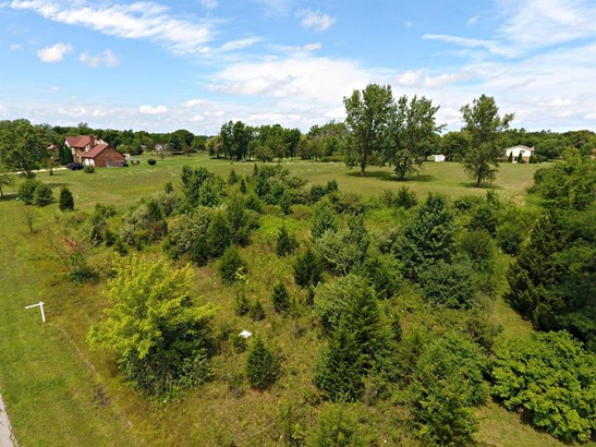 Vacant Land/Acreage - Merrillville, IN (photo 4)