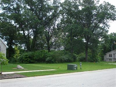 Vacant Land/Acreage - Hobart, IN (photo 1)