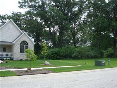 Vacant Land/Acreage - Hobart, IN (photo 2)