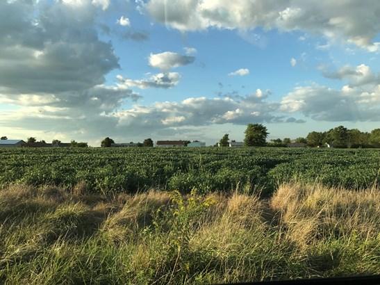 Land - GRANT PARK, IL (photo 1)