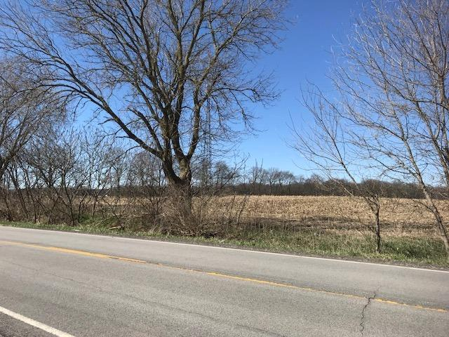 Vacant Land/Acreage - Union Mills, IN (photo 2)