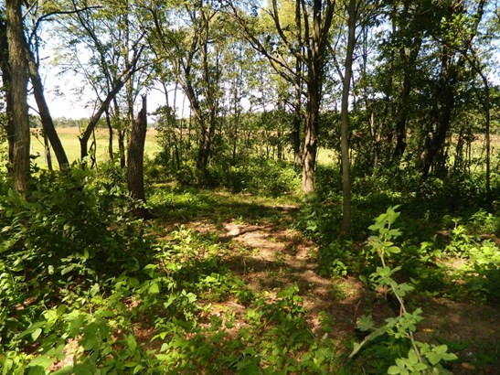 Vacant Land/Acreage - Wheatfield, IN (photo 4)