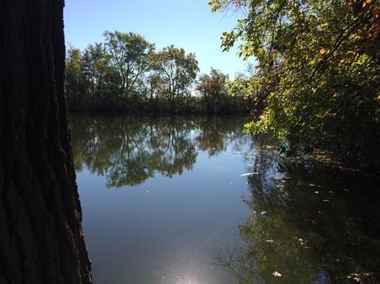 1.5 Story - BEAVERVILLE, IL (photo 4)