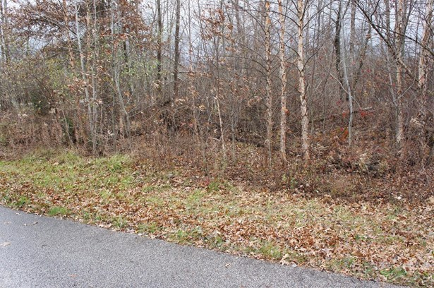 Vacant Land/Acreage - DeMotte, IN (photo 1)