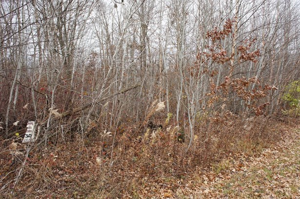 Vacant Land/Acreage - DeMotte, IN (photo 2)