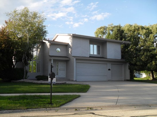 2 Stories, Contemporary - BOLINGBROOK, IL (photo 1)