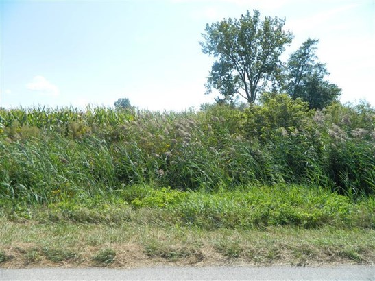 Vacant Land/Acreage - DeMotte, IN (photo 5)