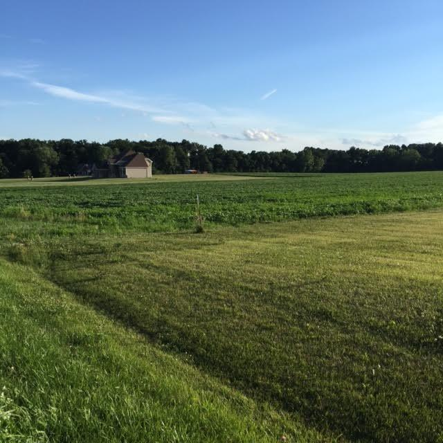 Vacant Land/Acreage - Hebron, IN (photo 5)