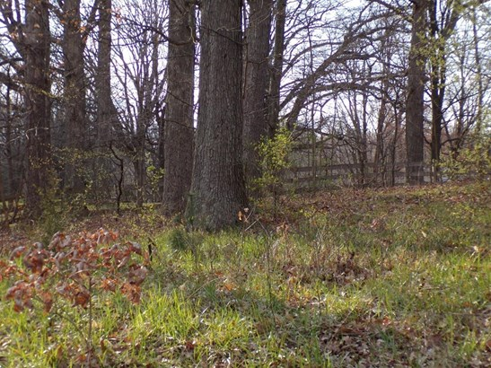 Vacant Land/Acreage - LaPorte, IN (photo 1)