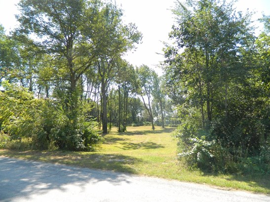 Vacant Land/Acreage - Fair Oaks, IN (photo 1)